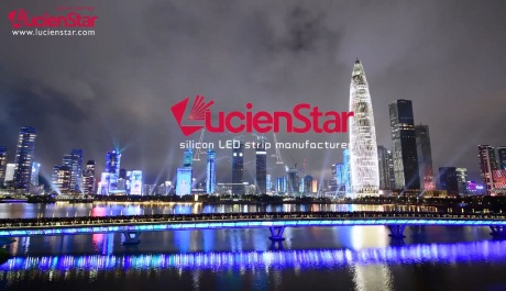 LucienStar - Company Introduction